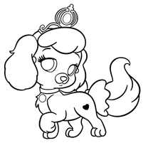 собачка принцесса
