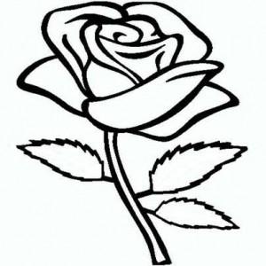 Простой рисунок розы