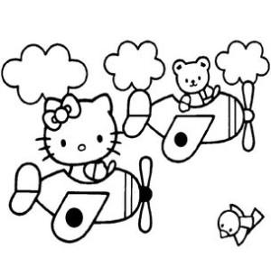 Кошечка на самолете