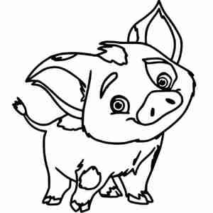 озорная свинка